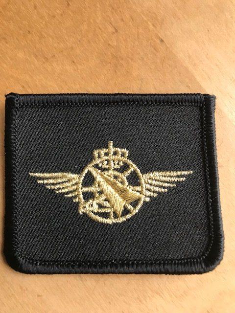 Brevet Luchtgevechtsleider